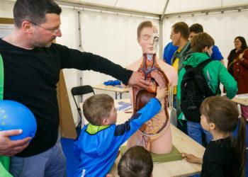 Kinderattraktion Event Potsdamer Tag der Wissenschaften - P3 Projekt