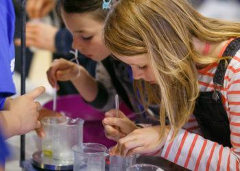 Event Wissenschaft Kinderbetreuung Potsdamer Tag der Wissenschaften - P3 Projekt